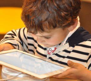 Como desenvolver a autonomia nos estudos online?
